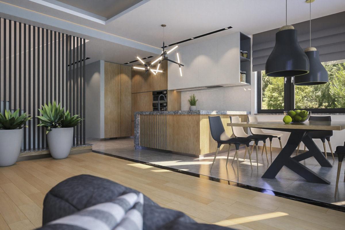 projekt domu-projekt domu z wnętrzem